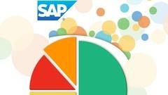 Illustrasjon kakediagram SAP Lumira