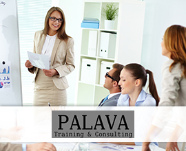 Palava Training & Consulting