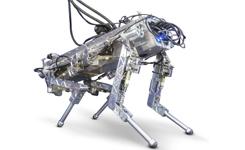 Un robot al trote