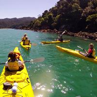 Gør din sommerferie til en oplevelse for livet