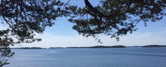Sommarhälsning från TräGuiden. Foto Eric Borgström