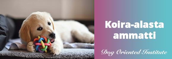 Dog Oriented Institute